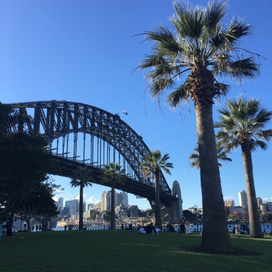 Harbour Bridge + Palm trees