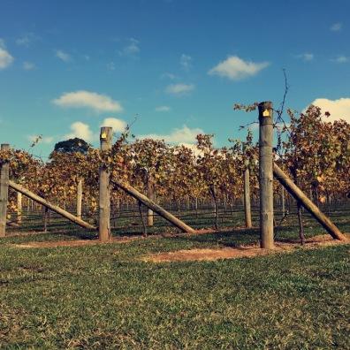 Farmwork Property